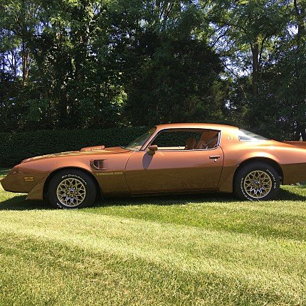 1979 Pontiac Firebird Trans Am Coupe for sale 100903403