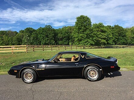 1979 Pontiac Trans Am for sale 100872176