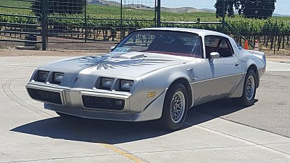 1979 Pontiac Trans Am for sale 100905367