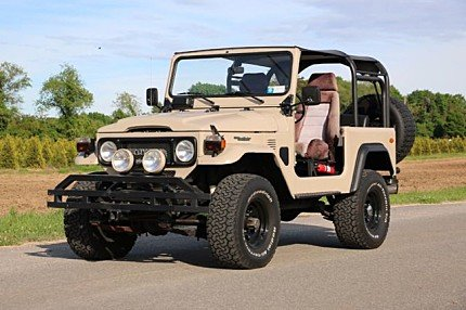 1979 Toyota Land Cruiser for sale 100874595