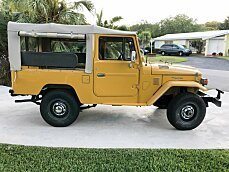 1979 Toyota Land Cruiser for sale 100995184