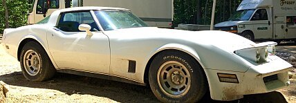1980 Chevrolet Corvette for sale 100761759