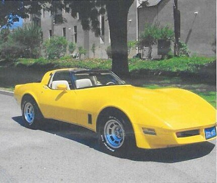 1980 Chevrolet Corvette for sale 100974501