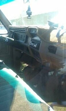 1980 Ford F150 for sale 100827492