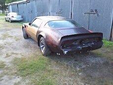 1980 Pontiac Firebird for sale 100927133