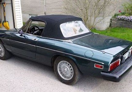 1981 Alfa Romeo Spider for sale 100795047