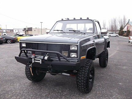 1981 Chevrolet C/K Truck 2WD Regular Cab 1500 for sale 101021194