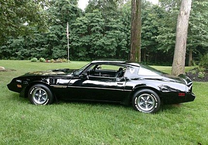 1981 Pontiac Firebird for sale 100909863