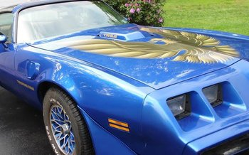 1981 Pontiac Firebird Trans Am for sale 100994873