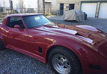 1982 Chevrolet Corvette for sale 100862782