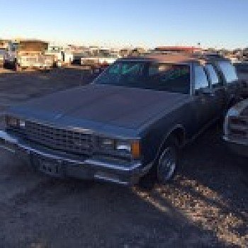 1984 Chevrolet Caprice Classic Wagon for sale 100740864