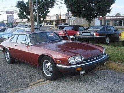 1984 Jaguar XJS for sale 100780900
