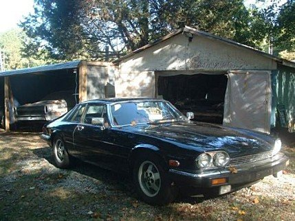 1984 Jaguar XJS for sale 100858488