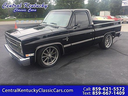 1985 Chevrolet C/K Truck 2WD Regular Cab 1500 for sale 101009828
