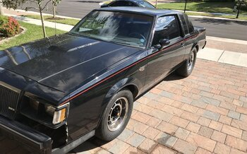 1987 Buick Regal Grand National for sale 100913305