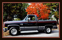 1987 Chevrolet C/K Truck 2WD Regular Cab 1500 for sale 100971094