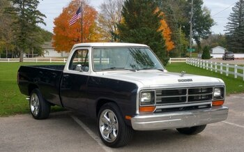 1987 Dodge D/W Truck for sale 100914479