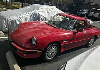 1988 Alfa Romeo Spider Quadrifoglio for sale 100963011