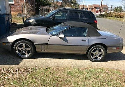 1988 Chevrolet Corvette for sale 100996902