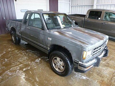 1988 Chevrolet S10 Pickup 4x4 Extended Cab for sale 100926611
