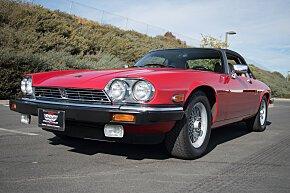 1989 Jaguar XJS V12 Convertible for sale 101054228
