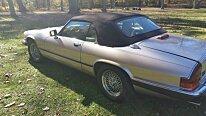 1991 Jaguar XJS for sale 100729245