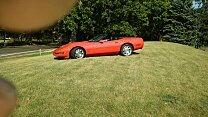 1994 Chevrolet Corvette Convertible for sale 100976689