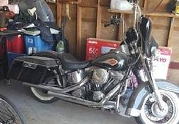 1997 harley-davidson Softail for sale 200488553