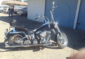 1999 Harley-Davidson Softail for sale 200533083