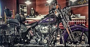 2000 Harley-Davidson Softail for sale 200621552