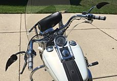 2001 Harley-Davidson Softail for sale 200487466