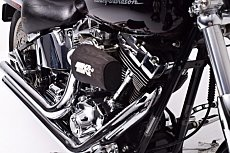 2001 Harley-Davidson Softail for sale 200515291