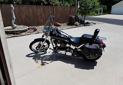 2001 Harley-Davidson Softail for sale 200583085