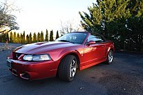 2003 Ford Mustang Cobra Convertible for sale 100835005