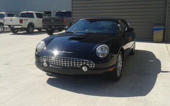 2004 Ford Thunderbird for sale 101056549
