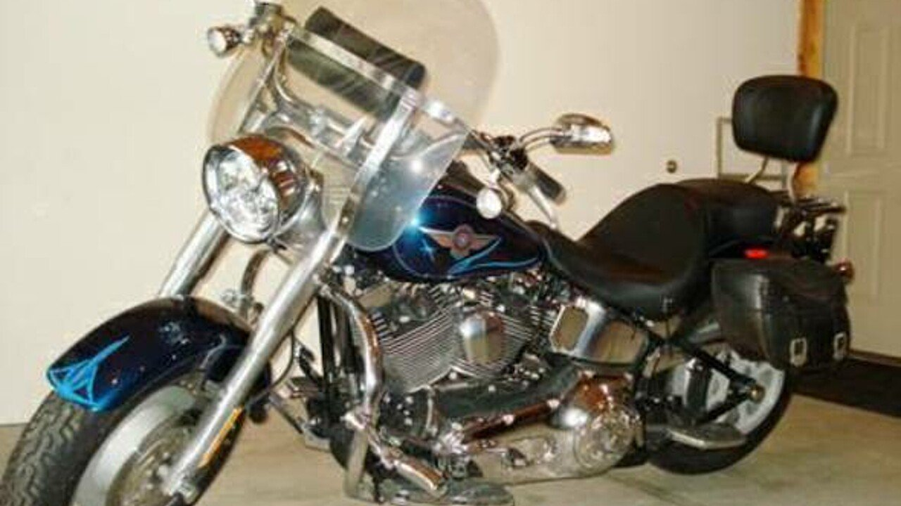 2004 Harley-Davidson Softail for sale 200416861