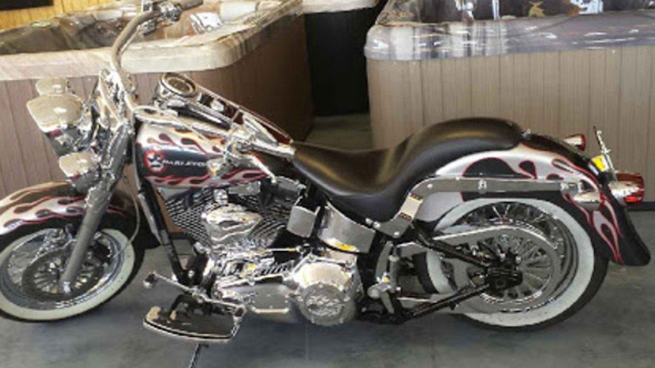2004 Harley-Davidson Softail for sale 200421242