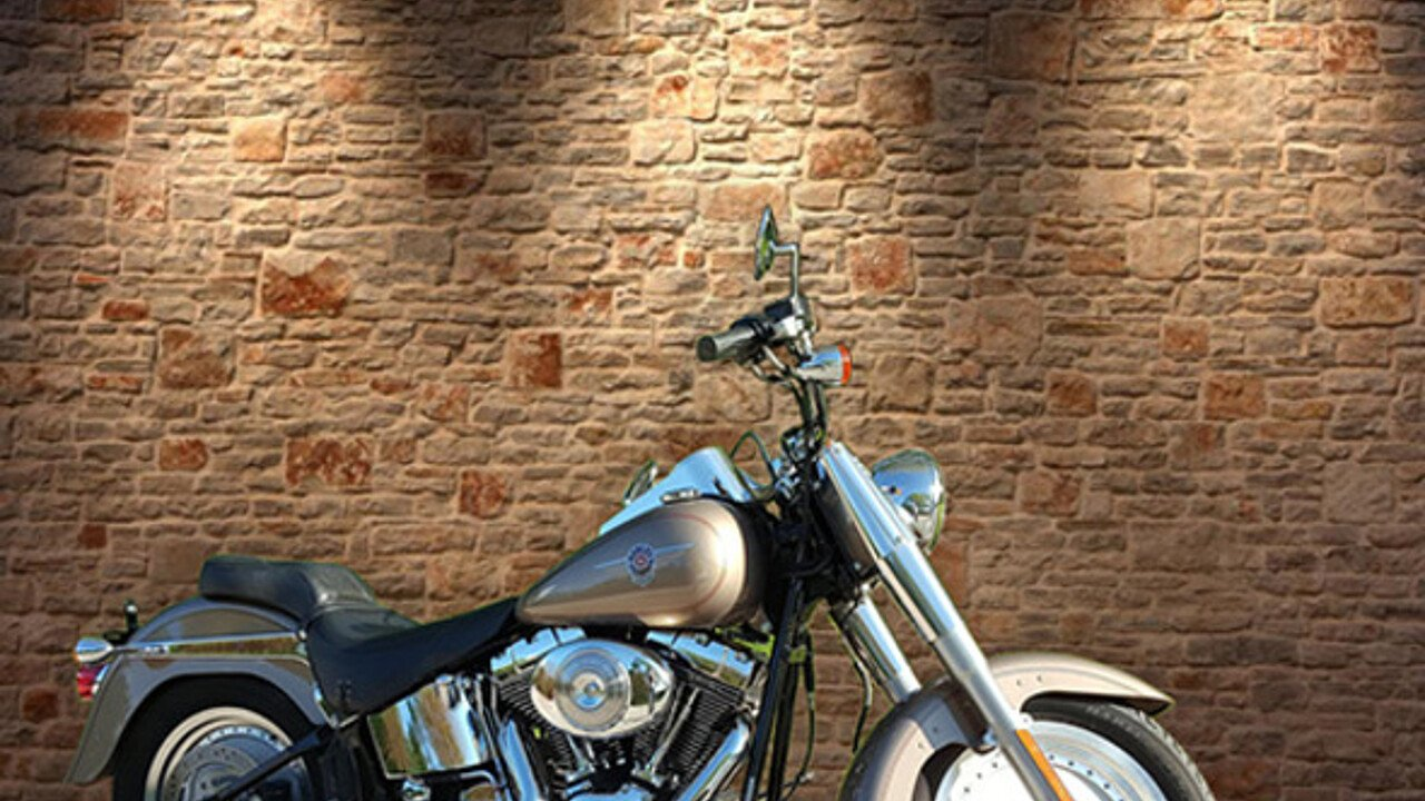 2004 Harley-Davidson Softail for sale 200462597