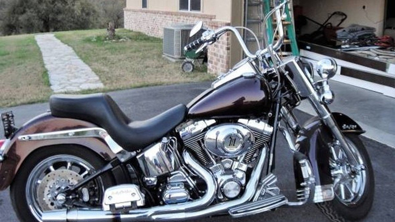 2004 Harley-Davidson Softail for sale 200518401