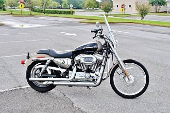 2004 Harley-Davidson Sportster for sale 200604356