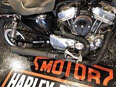 2006 Harley-Davidson Sportster for sale 200598029