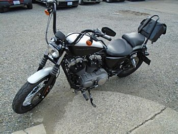 2008 Harley-Davidson Sportster for sale 200461324