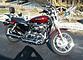 2008 harley-davidson Sportster for sale 200548094