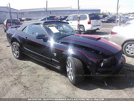 2009 Ford Mustang GT Convertible for sale 101015844