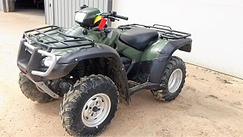 2009 Honda FourTrax Foreman Rubicon for sale 200577055