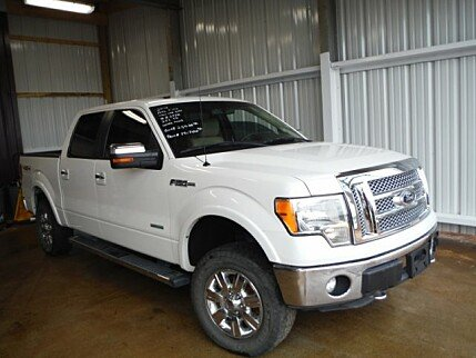 2012 Ford F150 for sale 100865213