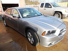 2013 Dodge Charger for sale 100749814