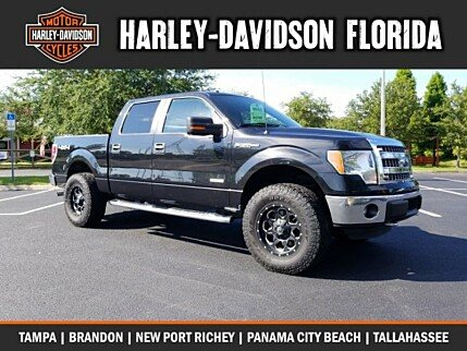 2014 Ford F150 for sale 100999486