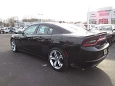 2016 Dodge Charger R/T for sale 100937501