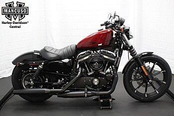 2017 Harley-Davidson Sportster Iron 883 for sale 200434317